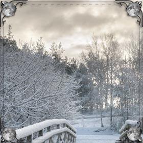 Белый и чистый снег