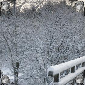 Белый пушистый снег