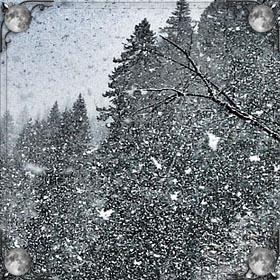 Белый снег летом