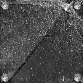 Быть под зонтом в дождь