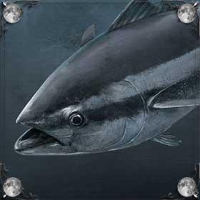Большой тунец