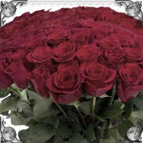 Дарят букеты цветов