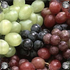 Черный виноград