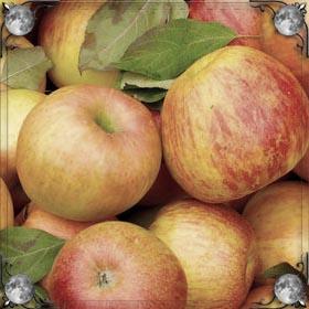Чистить яблоко
