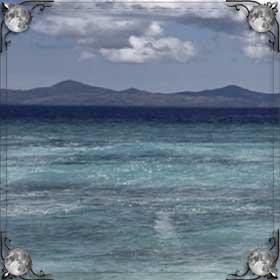 Чистый океан