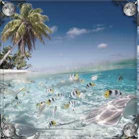 Дно моря