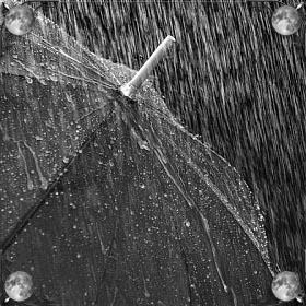 Дождь ливень