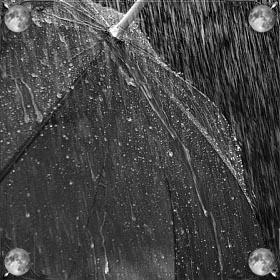 Дождь в доме
