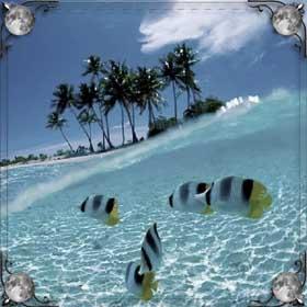 Ехать на море