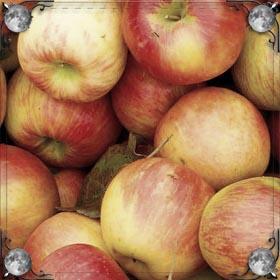 Есть яблоко