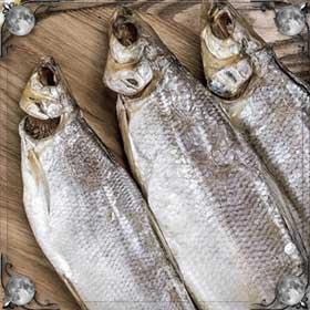 Гнилая рыба
