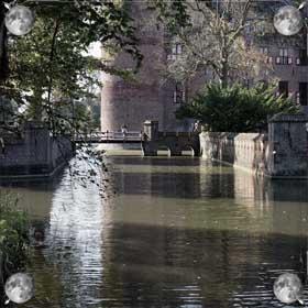 Грязный пруд