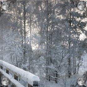 Кататься в снег