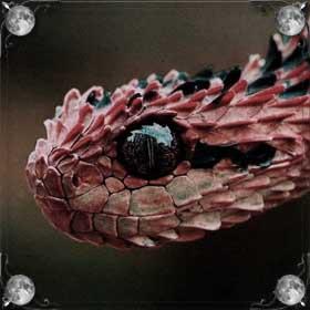 Красная змея