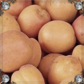 Крупные абрикосы