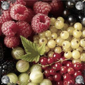 Лес и ягоды