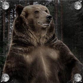 Медведь догоняет