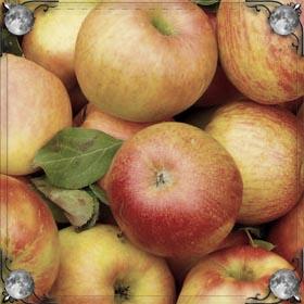 Мыть яблоки
