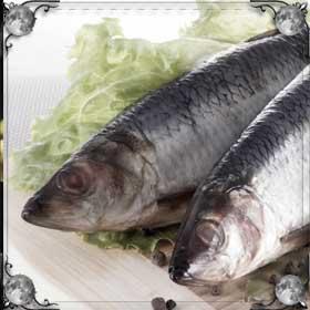 Много свежей рыбы