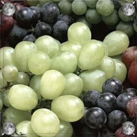 Много винограда