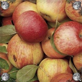 Надкусанные яблоки