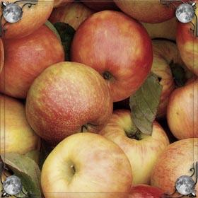 Очищенные яблоки