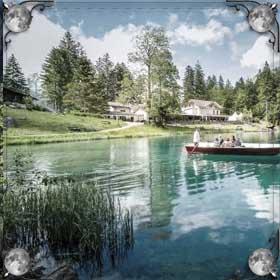 Озеро с водорослями