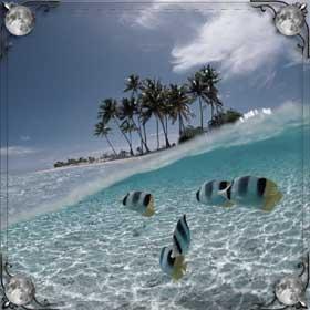 Плавать на море