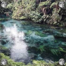 Плавать в реке