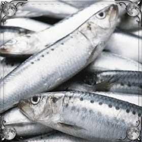 Выбирать рыбу