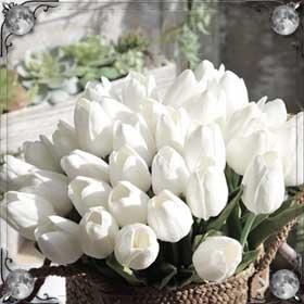 Покупать тюльпаны