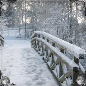 Поле снега
