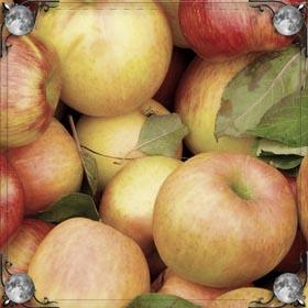 Получить яблоко