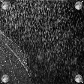 Промокнуть в дождь