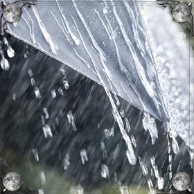 Промокнуть в ливень