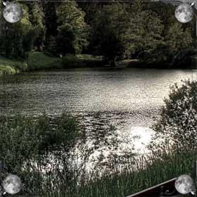 Против течения реки