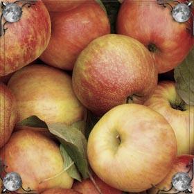 Рассыпать яблоки