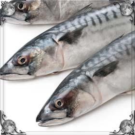 Рыба в тазу