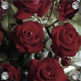 Розы на дереве