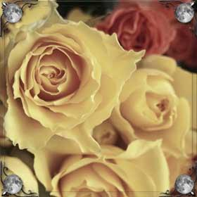 Рвать цветы