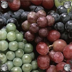 Рвать виноград
