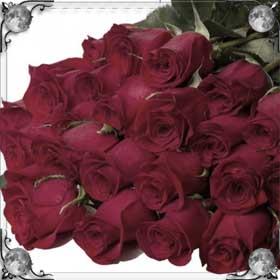 Сажать розы