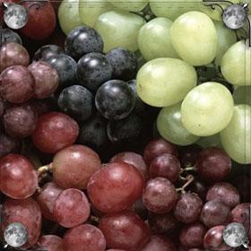 Сажать виноград