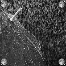 Шел дождь
