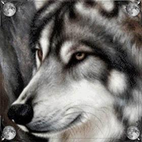 Слышать вой волков