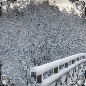 Снег и лед