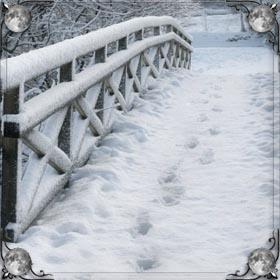 Снег ночью