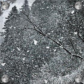 Снег во дворе