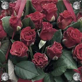 Срывать розу