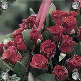 Стебель розы